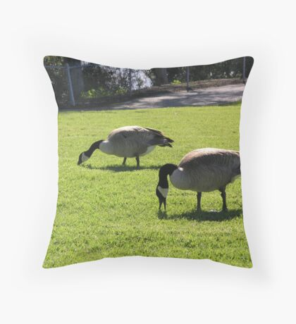 Geese Eating Grass Throw Pillow