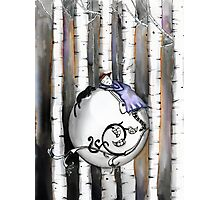 Sleeping with the birch Photographic Print