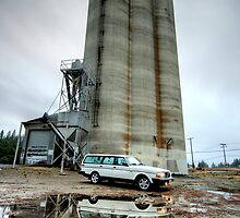 Volvo 245 and Grain Elevator by Bailey Sampson