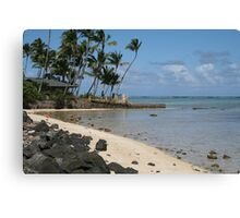 Nice view Canvas Print