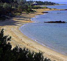 Ricketts Point from Quiet Corner Black Rock  Victoria  Australia by bayside2