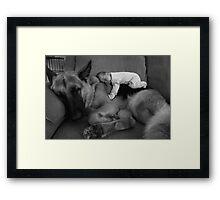 Moose & Squirrel Framed Print