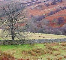 Cumbrian Pastoral by Harry Oldmeadow