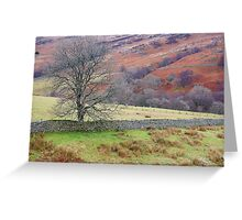 Cumbrian Pastoral Greeting Card