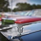 American Emblems 2998 by Clintpix