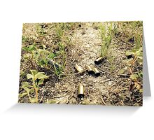 War In Nature Greeting Card