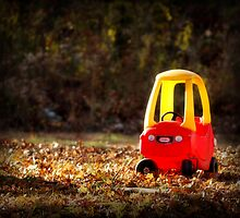 Cozy Coupe by PamelaJoPhoto
