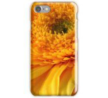Sunny Nature iPhone Case/Skin