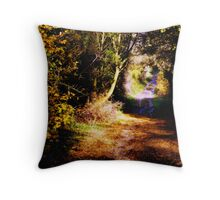 warm colours Throw Pillow
