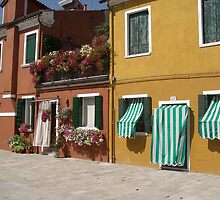 Candy Stripes and Flowers - Streetscape Burano Italy by chijude