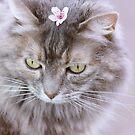 Flower Girl I by Lynn Starner