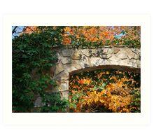 Framing Fall Art Print