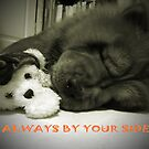 Always By Your Side by smile4me