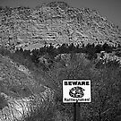 Beware of Rattlesnakes by Cyndi Keeley