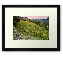 Autumn dusk on Roussette vineyard Framed Print