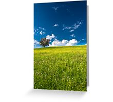 single tree on bright meadow Greeting Card