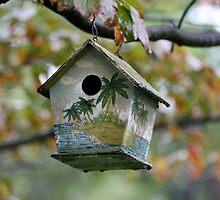 My Bird House by ZeeZeeshots