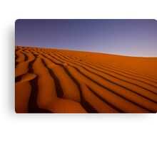 The Sandhill Canvas Print