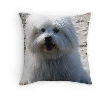 First Day at the Beach Throw Pillow