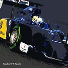 SAUBER F1 TEAM by harrisonformula