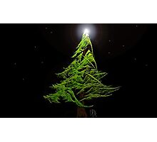Little Tree-Challenge by Owlspook Photographic Print