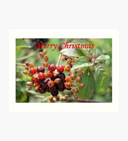 Christmas Berries I Art Print