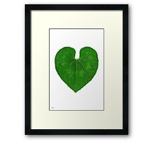 Love Heart Leaf Framed Print
