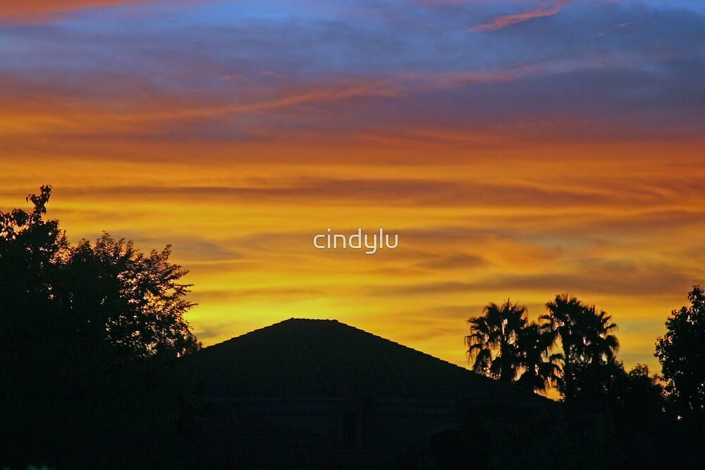 Arizona paintbrush 2 by cindylu