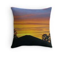 Arizona paintbrush 2 Throw Pillow