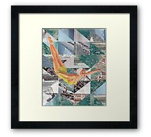 Taking the dive Framed Print