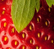 Strawberry by M. van Oostrum