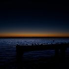 Old Busselton Jetty by Andrew Dickman