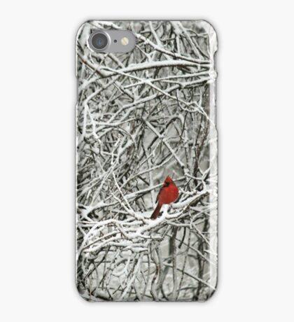 a touch of red iPhone Case/Skin