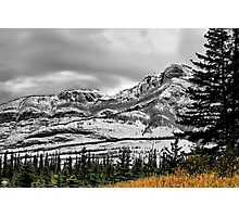 Enroute to Jasper on Hwy. 16 Photographic Print