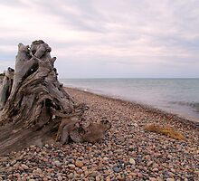 Windy Day on Whitefish Point II by Megan Noble