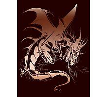 dragon fantasy Photographic Print