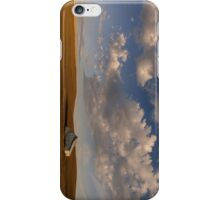 Palouse Serenity iPhone Case/Skin