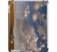 Palouse Serenity iPad Case/Skin