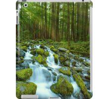 Olympic Green iPad Case/Skin