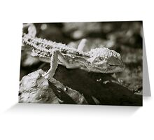 Parched Greeting Card