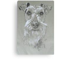 Irish Terrier Canvas Print