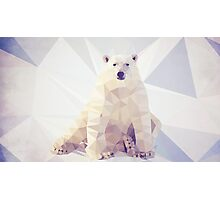 Lazy Bear Photographic Print