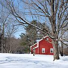Classic Vermont Red House In Winter by Edward Fielding