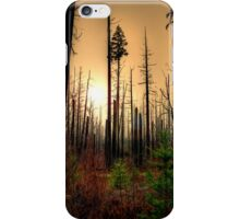 After The Fire iPhone Case/Skin