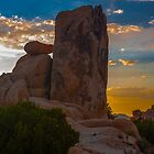 The Watchtower by photosbyflood