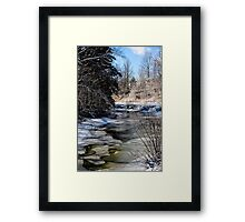 Shades of Winter Framed Print