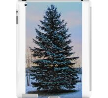 Frosted Spruce iPad Case/Skin