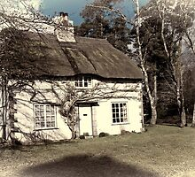 Cottage in the Woods by Country  Pursuits