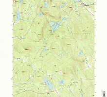 Maine USGS Historical Map North Waterford 102831 1995 24000 by wetdryvac