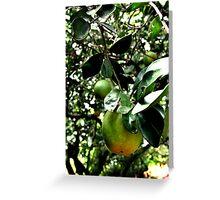 Limón Greeting Card